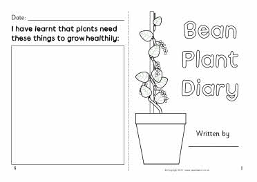 Addition Doubles Plus One furthermore Sb4757 additionally Rose Plant Life Cycle For Plant moreover Human Life Cycle Human Stages Of Development 7548714 additionally Sizes Of Plants Worksheets For Kindergarten. on flower life cycle kindergarten