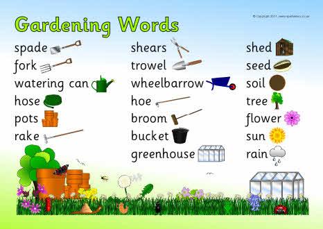 Garden Of Words Kinox