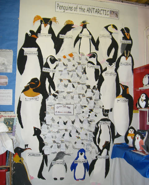 Penguins Of The Antarctic Classroom Display Photo Photo