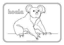 australian animals colouring sheets sb9002 sparklebox. Black Bedroom Furniture Sets. Home Design Ideas