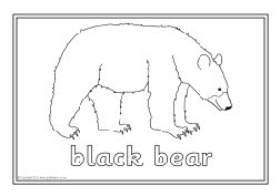 north america animals coloring pages - photo#15
