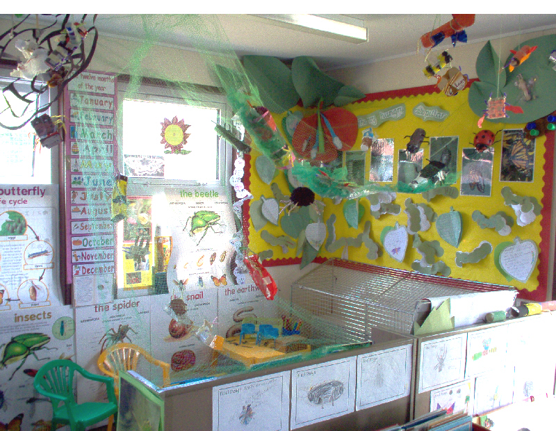 Classroom Board Decoration For Preschool ~ Minibeast research role play area classroom display photo