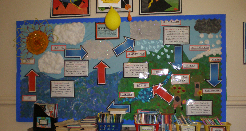 The Water Cycle Display 50