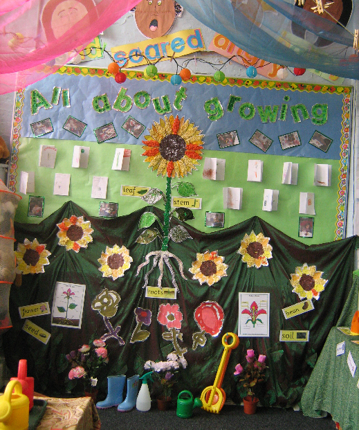 Classroom Display Ideas Nursery ~ Growing classroom display photo gallery sparklebox