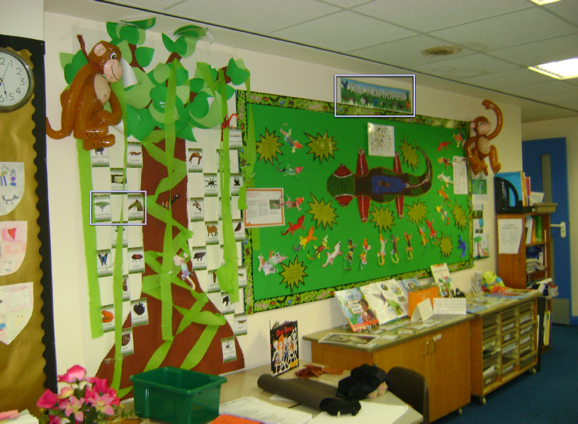 the rainforest classroom display photo sparklebox. Black Bedroom Furniture Sets. Home Design Ideas