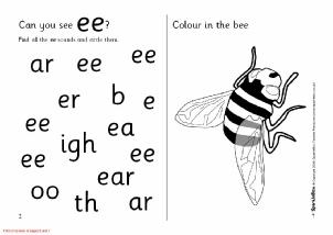 Words with EE - Phonics Activities and Printable Teaching ...