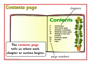 Ks1 Ks2 Non Fiction Reading Teaching Resources And Printables