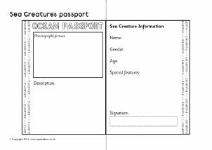 passport writing frames and printable page borders ks1 ks2