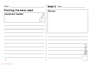 View Preview Bean Plant Diary Template
