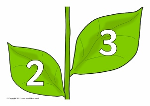 Plants and Leaves Number Classroom Display Resources