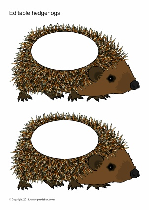 Hedgehog Themed Classroom Printables Sparklebox