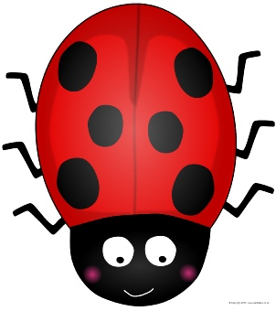 graphic relating to Printable Ladybug named Ladybird-Themed Clroom Printables - SparkleBox