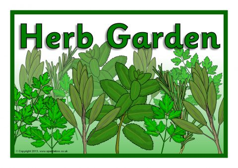 Ordinaire Printable Signs For Your School Herb Garden. Preview