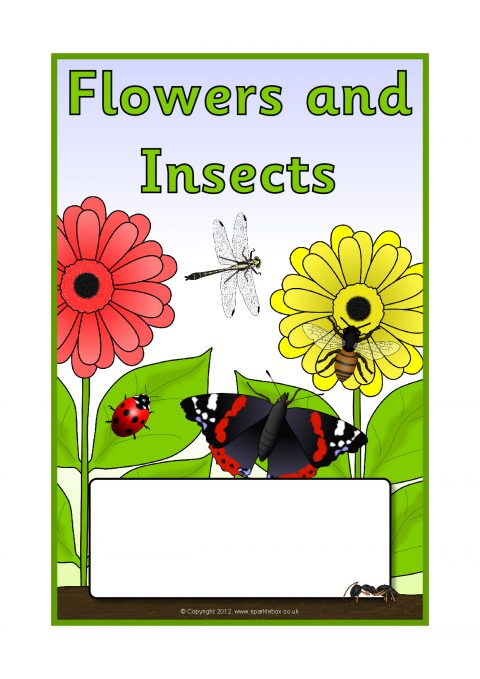 Flowers and Insects Editable Topic Book Covers (SB8708 ...