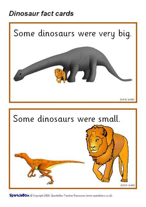 dinosaur fact cards  sb1189