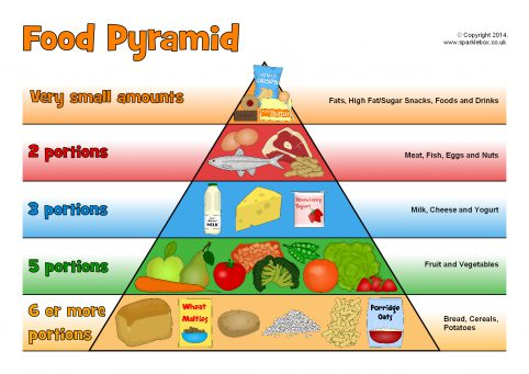 photograph about Food Pyramid Printable identify Food items Pyramid Posters (SB10967) - SparkleBox