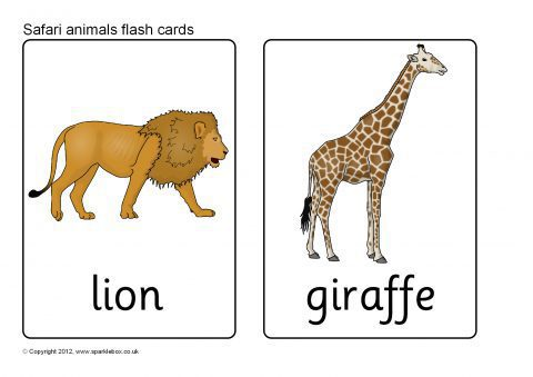 Safari Animal Flash Cards (SB7723) - SparkleBox Mammals Clipart Black And White