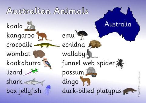 Sb9162 Australian Animals Word Mat on Free Printables