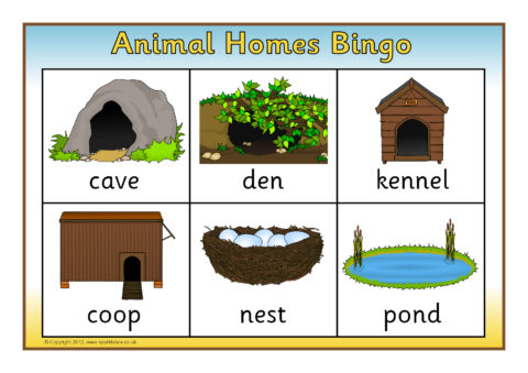 Animal Homes Primary Teaching Resources & Printables - SparkleBox