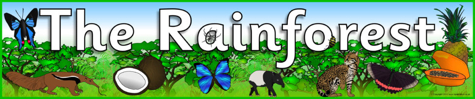 Image result for the rainforests banner