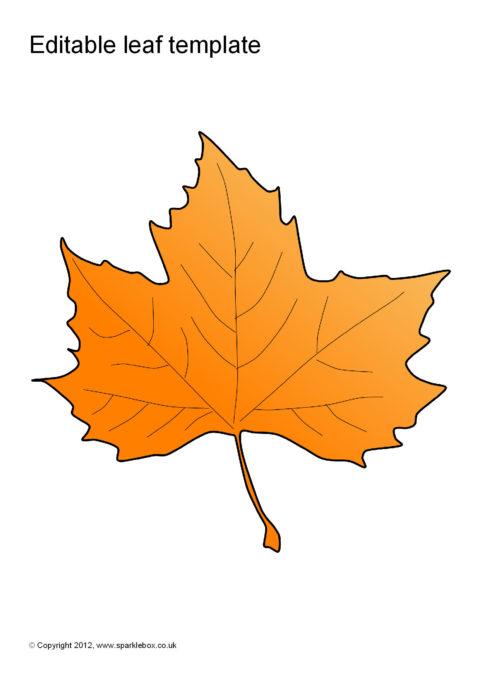 editable leaf templates  sb7207