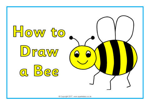 How To Draw A Bee Posters Sb12295 Sparklebox