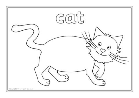 Pets Colouring Sheets (SB4664) - SparkleBox
