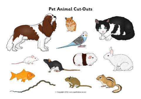 Pet Animal Cut Outs Sb10305 Sparklebox