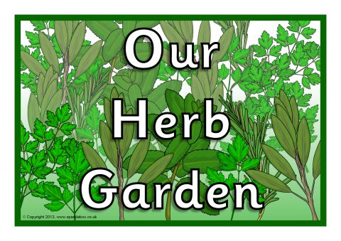 Merveilleux Printable Signs For Your School Herb Garden. Preview
