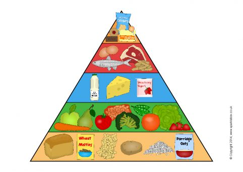 picture regarding Food Pyramid Printable titled Food stuff Pyramid Posters (SB10967) - SparkleBox