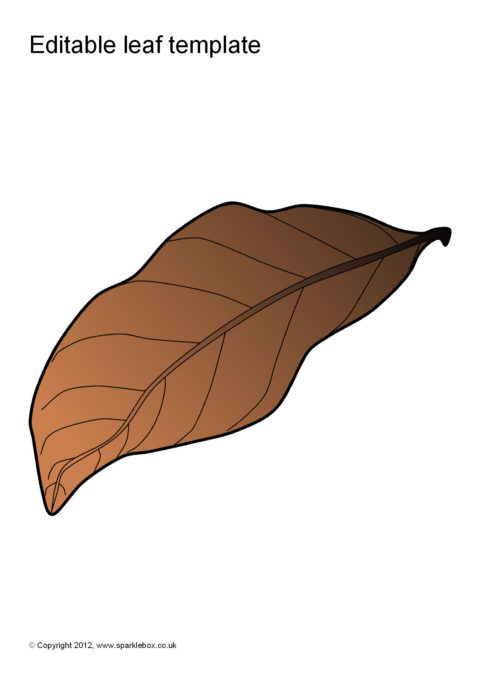 Superb SparkleBox  Editable Leaf Template