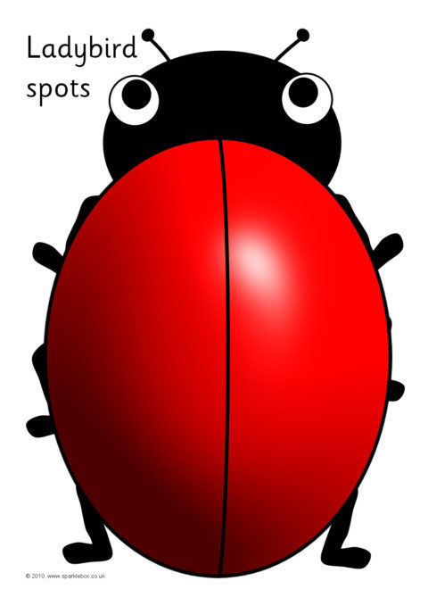 black ladybird spots counting  u0026 addition sheets