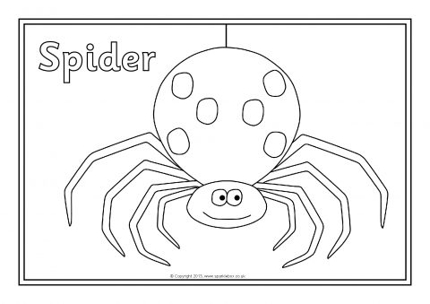 Mini Beast Coloring Pages Coloring Pages
