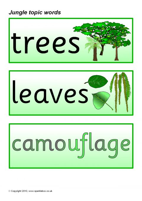 jungle topic word cards