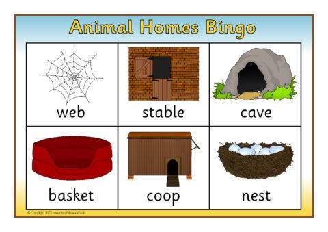 Animal Homes Pictures Www Pixshark Com Images