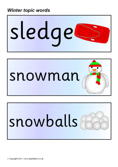 winter topic word cards  sb5510
