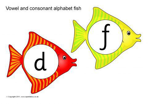 Letter Words With  Vowels And  Consonants