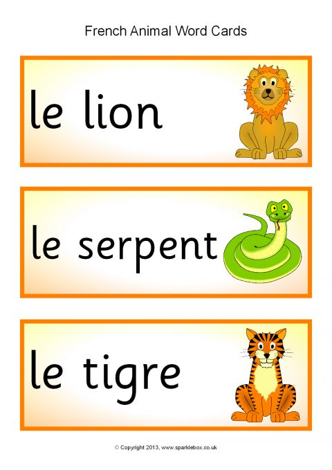 french animal word cards  sb1316