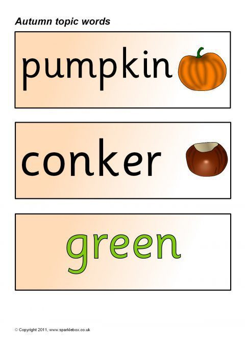 autumn topic word cards  sb450