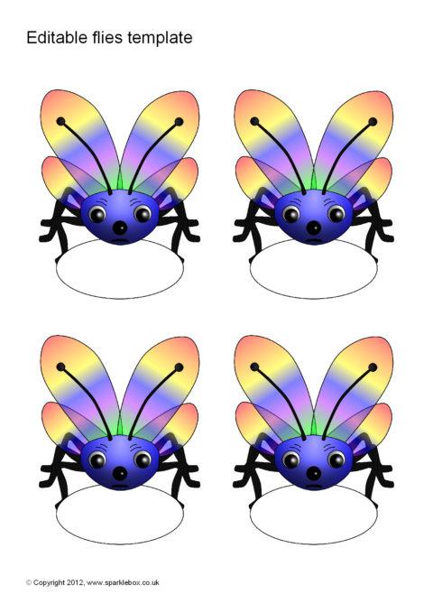 editable fly templates sb7396 sparklebox