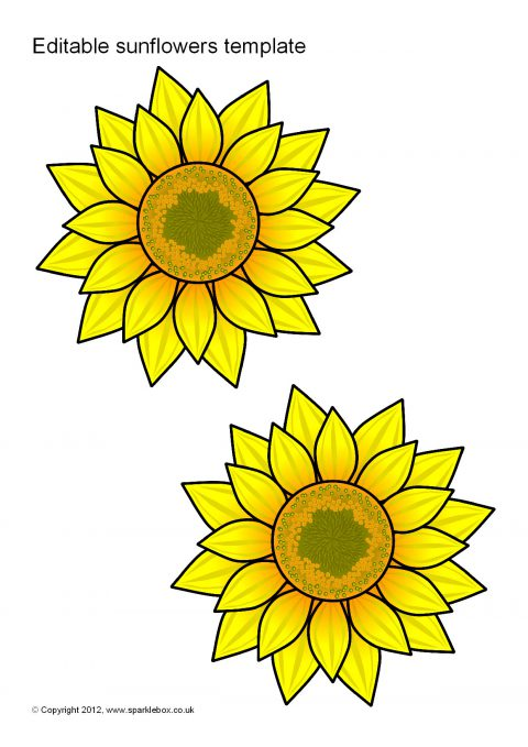 editable sunflower templates sb7065 sparklebox